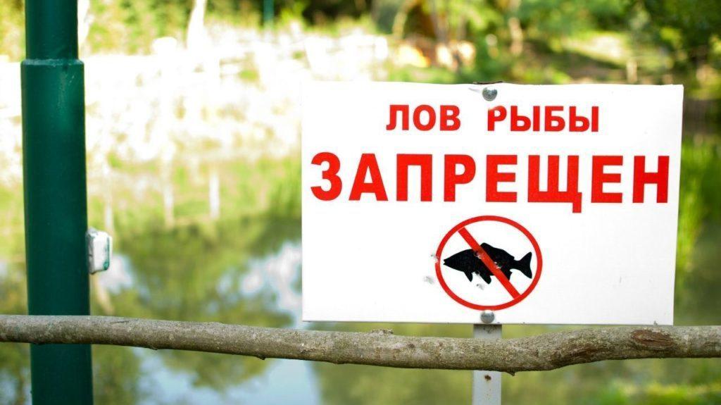 лов рыбы запрещен